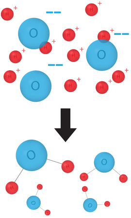react: Hydration Reaction Illustration