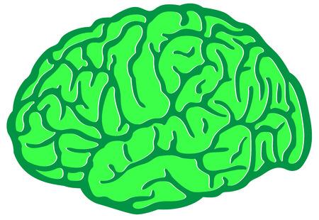 think green: Piensa Verde Cerebro