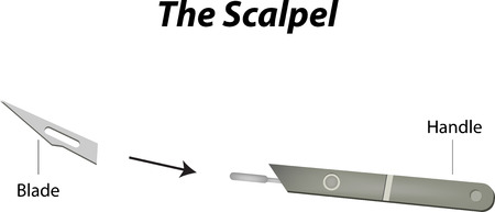 The Scalpel Labeled Diagram