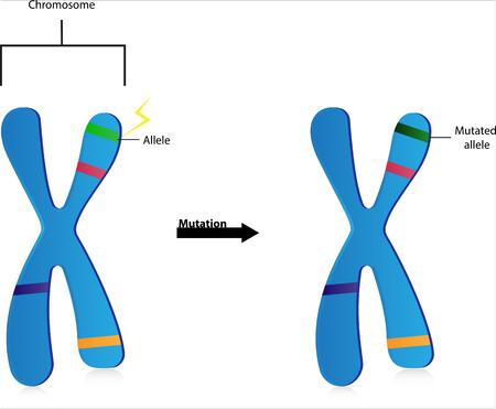Gene Mutations Ilustrace