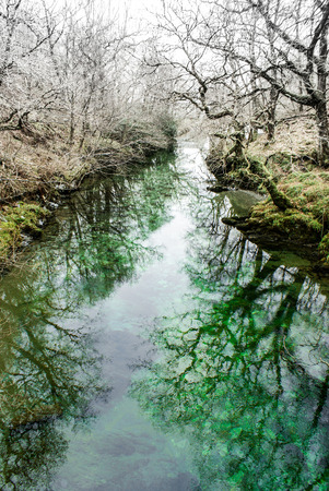 green river: Boggy Green River Stock Photo