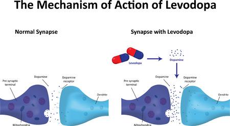 pharmacy pills: Levodopa