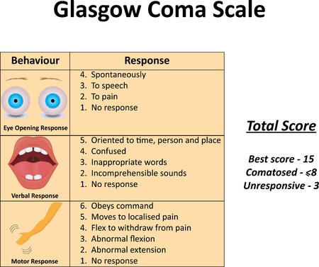 unresponsive: Glasgow Coma Scale