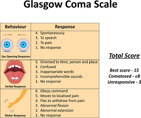 human head: Glasgow Coma Scale