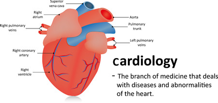 specialty: Cardiology Definition