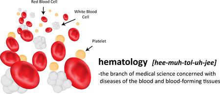 definicion: Hematolog�a Definici�n Foto de archivo