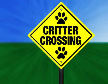 critter: A yellow and black graphic Critter Crossing street sign. Stock Photo