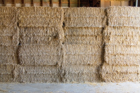 This is a stack of rectangular hay bundle in a farm. photo