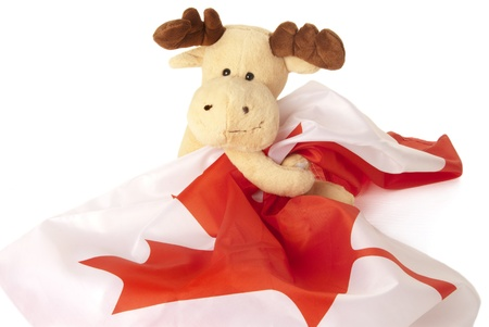 This is a moose toy holding a canadian flag isolated over a white background. Stock fotó