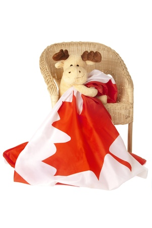 This is a moose toy seating on a rattan chair and holding a canadian flag isolated over a white background. photo