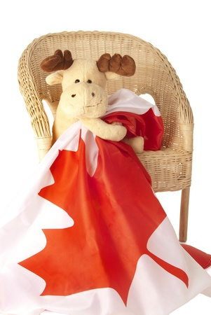 cuntry: This is a moose toy holding a canadian flag isolated over a white background. Stock Photo