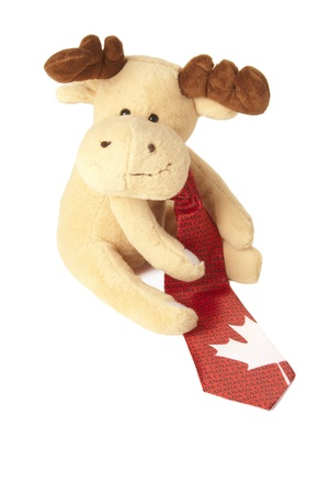 This is a moose toy wearing a canadian tie isolated over a white background.
