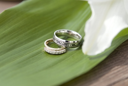 This is two wedding rings over a green leaf of a white flower outside on a quay.