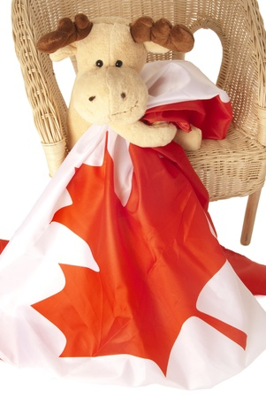 This is a moose toy seating on a rattan chair and holding a canadian flag isolated over a white background.