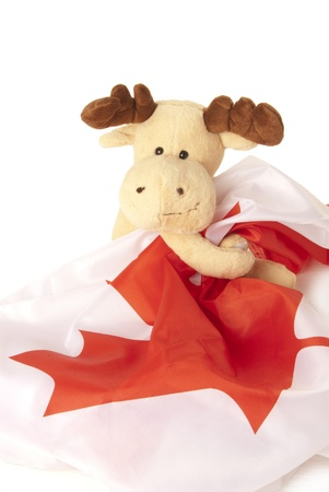 This is a moose toy holding a canadian flag isolated over a white background. photo