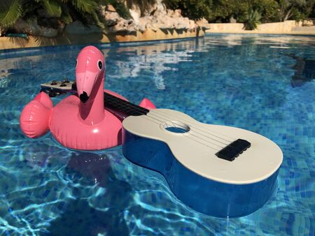 Inflatable pink flamingo and a blue plastic ukulele floating in a swimming pool. Summer fun, leisure and recreation Banco de Imagens