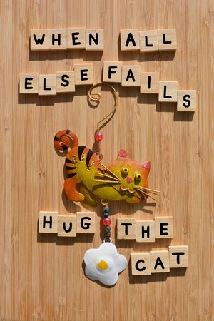 Funny cat quote. When All Else Fails, Hug The Cat