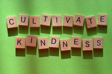 Cultivate Kindness, words in wooden alphabet letters on a bright green background Foto de archivo