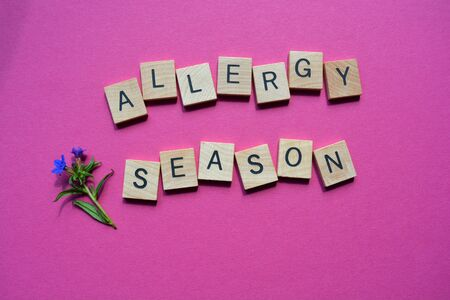 Allergy Season, words in wooden alphabet letters with flowers, isolated on bright pink background
