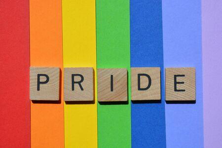 Stolz, Wort in 3D-Holz-Alphabet-Buchstaben isoliert auf Regenbogen gestreiften farbigen Hintergrund