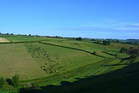 Semi aerial view over valley and farm fields with cattle from Donkey Lane, looking towards Poyntington, near Sherborne, Dorset, England Stock Photo