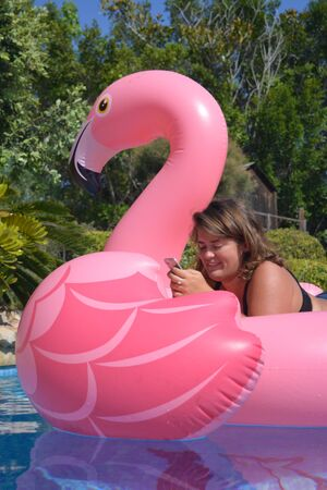 Young woman checking her mobile whilst floating on an inflatable pink flamingo in a swimming pool on a hot summer day