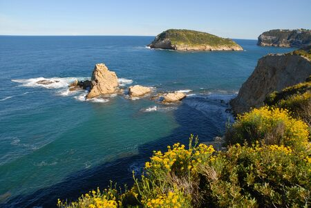 Coastal view with yellow wildflowers in spring,  to the island of Portichol from the headland at Cap Prim, Javea, Alicante Province, Spain Stock Photo