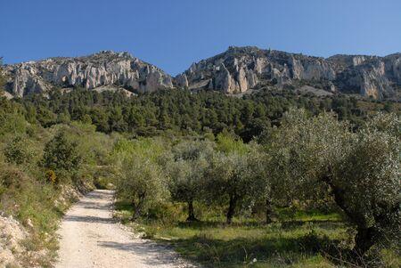 Els Frares limestone rock pinnacles near Quatretondeta, Sierra de Serrella, Alicante Province, Spain