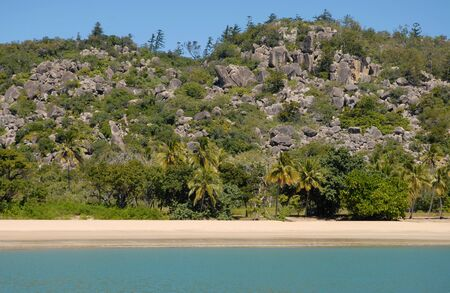 View from sea to palm fringed beach at Radical Bay, Magnetic Island, Queensland, Australia Stock Photo