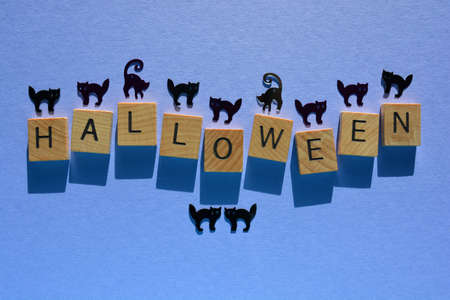 Halloween, word in wooden alphabet letters with cat sequin silhouettes