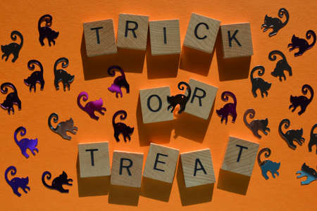 Trick or Treat. words in wood alphabet letters surrounded by Halloween themed cat shapes