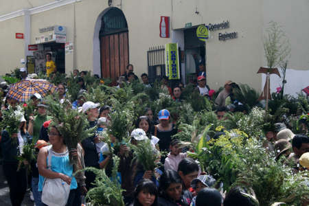 Quito, Ecuador - April 01, 2012 - People with their leaves at the Palm Sunday procession