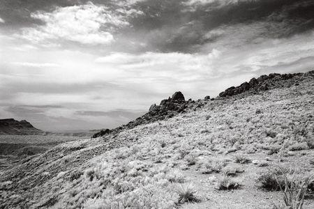 chihuahua desert: Chihuahuan Desert in infrared Stock Photo