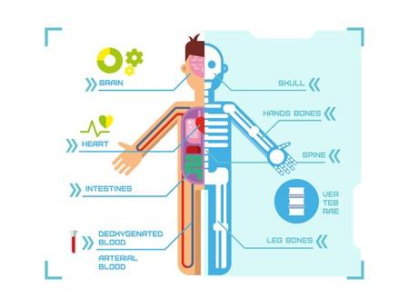 파란색 배경의 개념 평면 벡터 일러스트 레이 션에 인간의 신체 해부학 인포 그래픽 디자인.