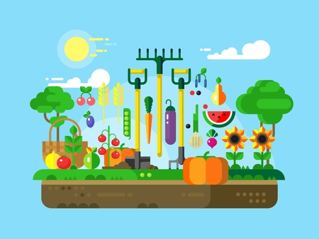 vegetable gardening: Gardening design flat. Vegetable food, fruit vegetarian, agriculture garden, illustration
