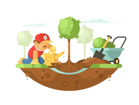 Gardener man planting tree and watering young seedling. Vector illustration Illustration