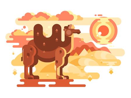 Twee-gehobbelde kameel in woestijn Stockfoto