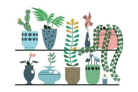 Green plants in pots and vases set