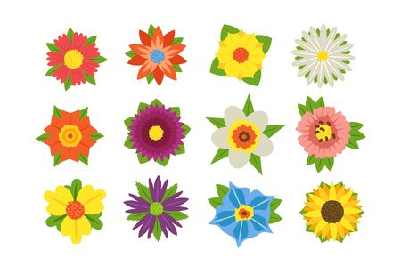 Set of summer flowers illustration. Collection consists of beautiful colorful blossoms with different shapes and forms flat style concept. Isolated on white Zdjęcie Seryjne