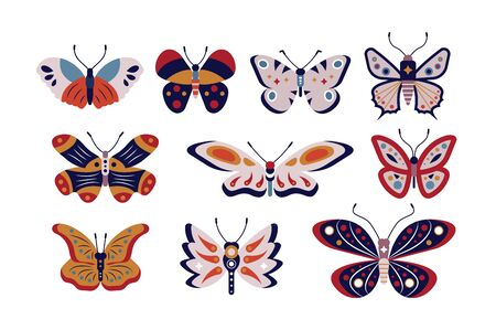 Butterflies set illustration. Summer composition of colorful exotic moth with different shapes of wings for design embellish logo template flat style concept. Isolated on white