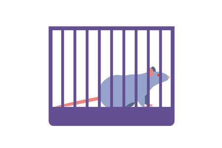 Mouse placed in cage Illustration