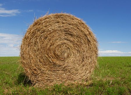 Hay Bale, green fields and blue sky Фото со стока