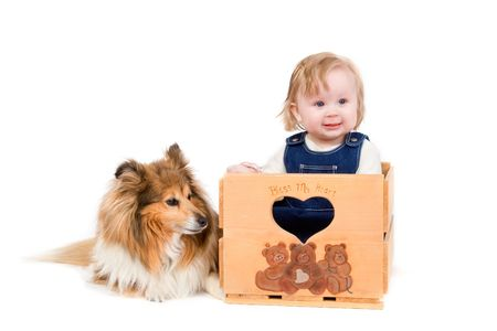 sheepdog: A cute baby girl with a Shetland Sheepdog on white background Stock Photo