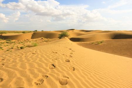 footsteps: Footsteps on desert dunes in Rajasthan, India