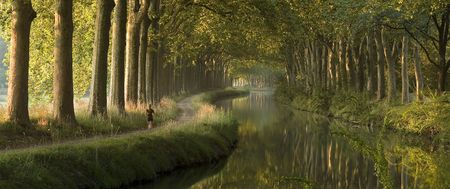 midi: Panoramic scene of a woman running along a river surrounded by big trees