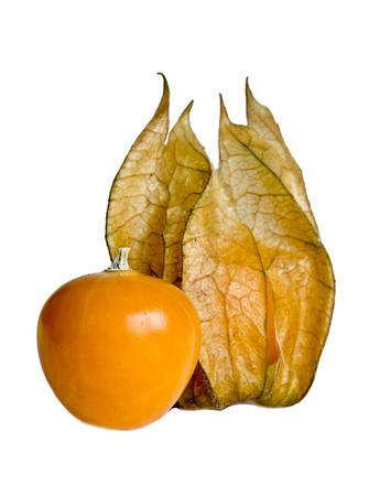 Physalis is a genus of plants in the nightshade family  Solanaceae , native to warm temperate and subtropical regions throughout the world Stock Photo