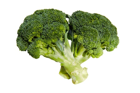 Two branches of broccoli on white background