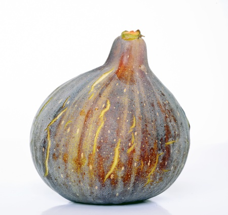 A single fig on white background