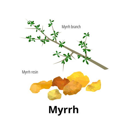 Isolated myrrh branch with leaves and resin.