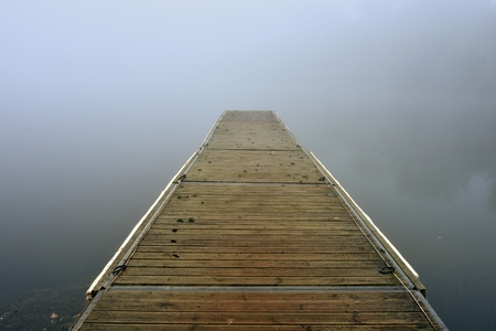 Surrounded by the mist, the jetty seems to go into the unknown, It was a beautiful misty morning in the black swan lake.
